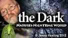 The Dark Nature's Nighttime World
