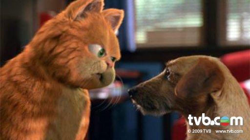 加菲猫电影 - 相片 - tvb.com
