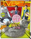 下載 TVB Weekly #1008