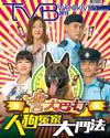 下載 TVB Weekly #973