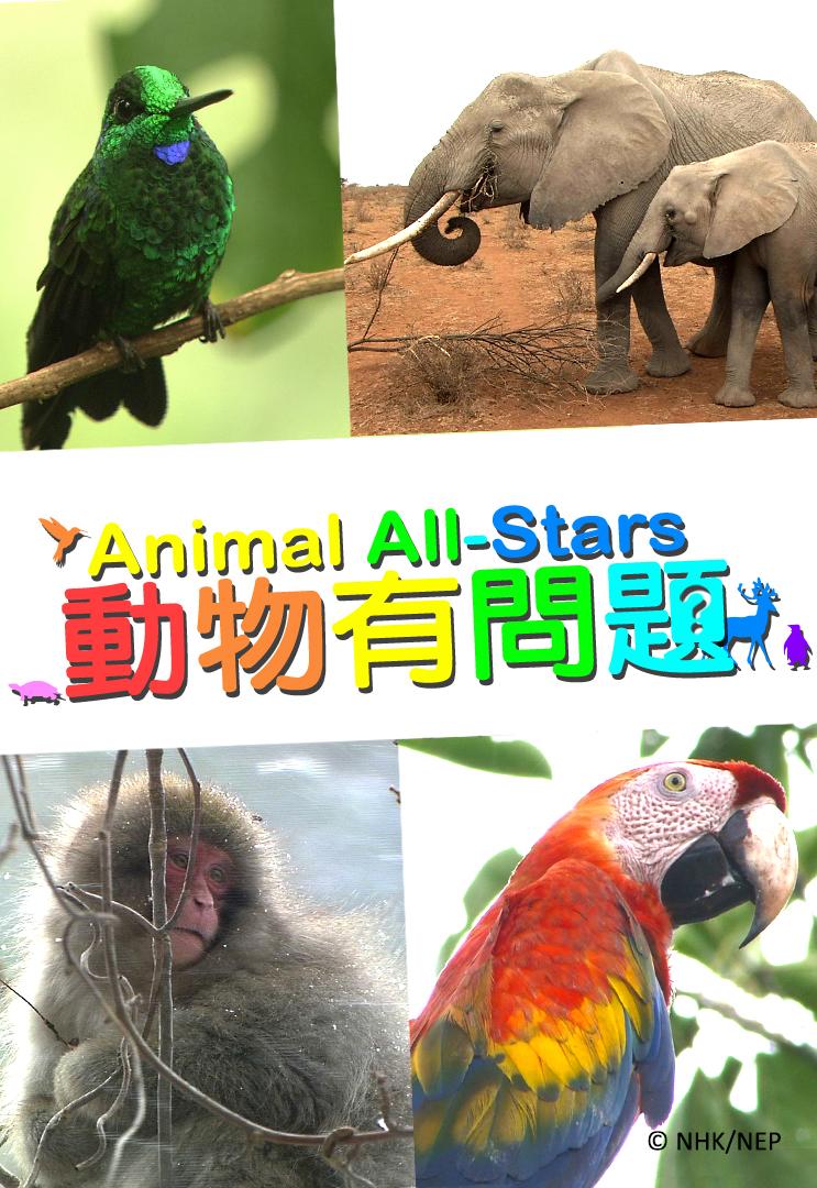 動物有問題 - myTV SUPER
